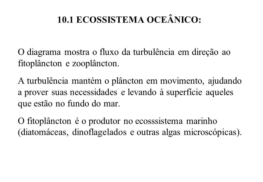 10.1 ECOSSISTEMA OCEÂNICO: O diagrama mostra o fluxo da turbulência em direção ao fitoplâncton e zooplâncton. A turbulência mantém o plâncton em movim