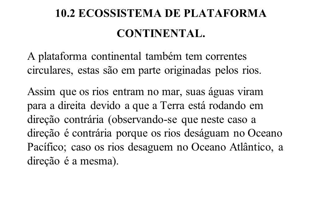 10.2 ECOSSISTEMA DE PLATAFORMA CONTINENTAL. A plataforma continental também tem correntes circulares, estas são em parte originadas pelos rios. Assim