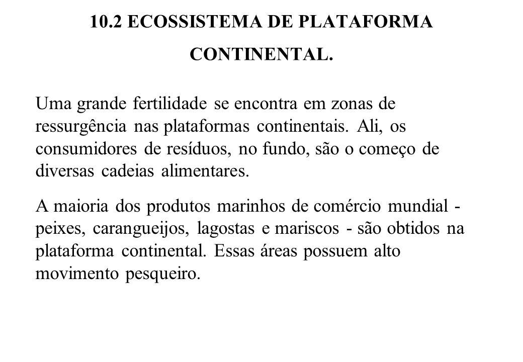 10.2 ECOSSISTEMA DE PLATAFORMA CONTINENTAL. Uma grande fertilidade se encontra em zonas de ressurgência nas plataformas continentais. Ali, os consumid