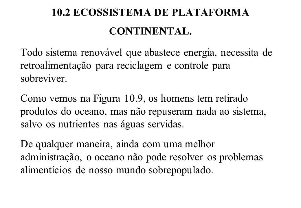 10.2 ECOSSISTEMA DE PLATAFORMA CONTINENTAL. Todo sistema renovável que abastece energia, necessita de retroalimentação para reciclagem e controle para