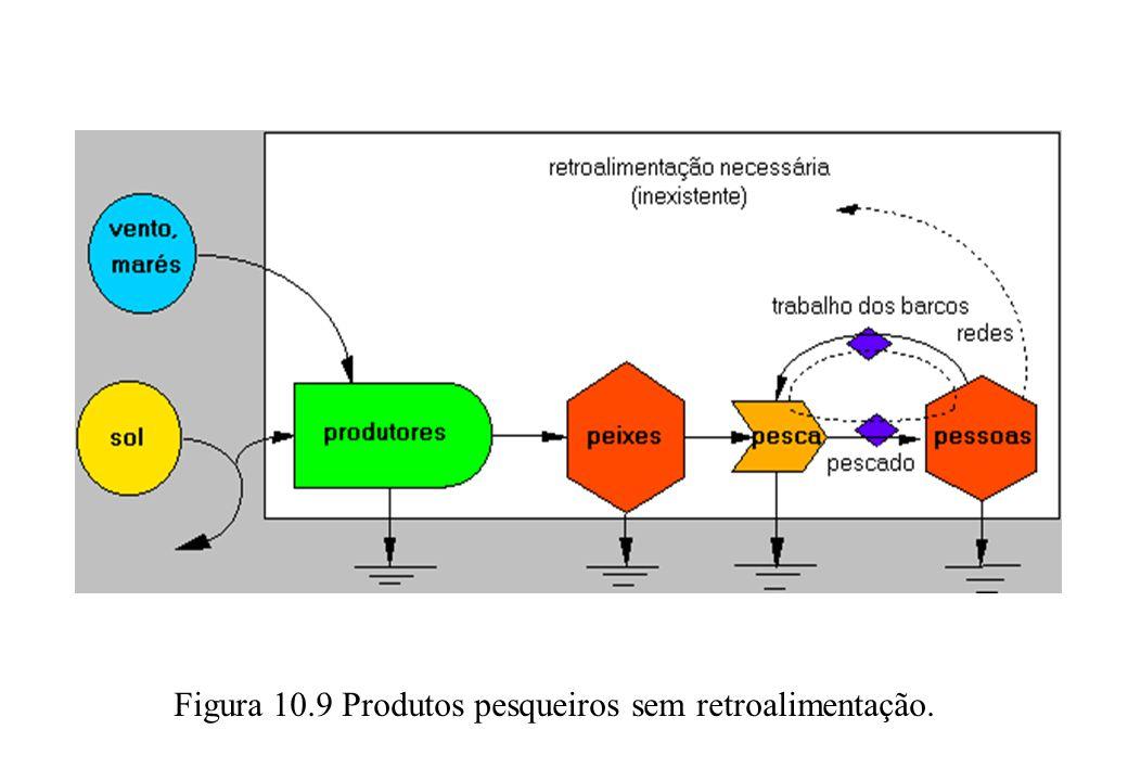 Figura 10.9 Produtos pesqueiros sem retroalimentação.