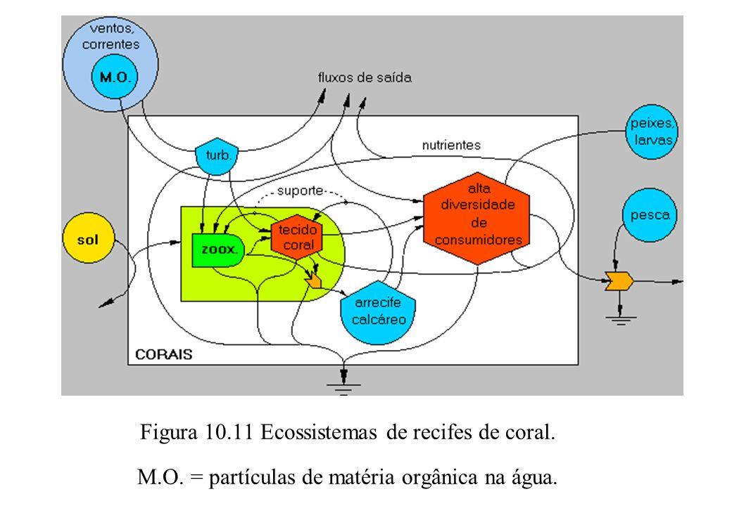 Figura 10.11 Ecossistemas de recifes de coral. M.O. = partículas de matéria orgânica na água.