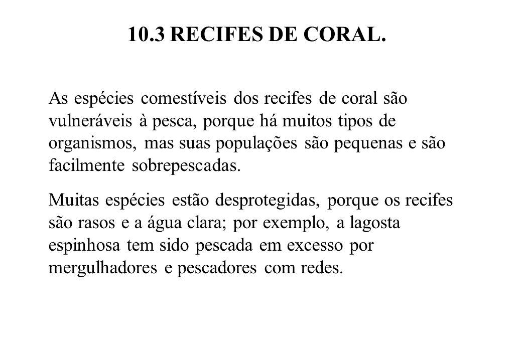 10.3 RECIFES DE CORAL. As espécies comestíveis dos recifes de coral são vulneráveis à pesca, porque há muitos tipos de organismos, mas suas populações