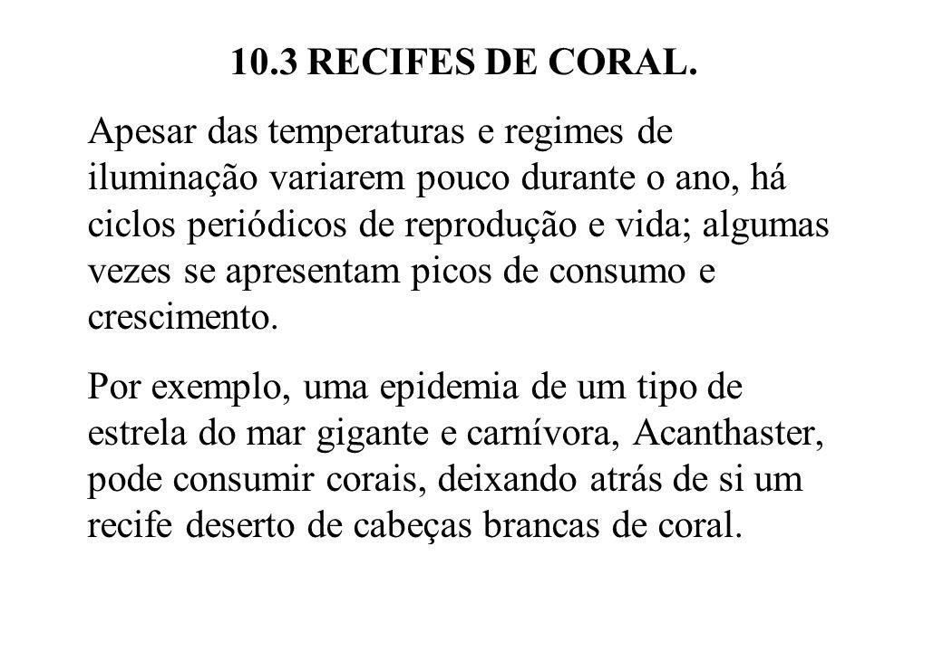 10.3 RECIFES DE CORAL. Apesar das temperaturas e regimes de iluminação variarem pouco durante o ano, há ciclos periódicos de reprodução e vida; alguma