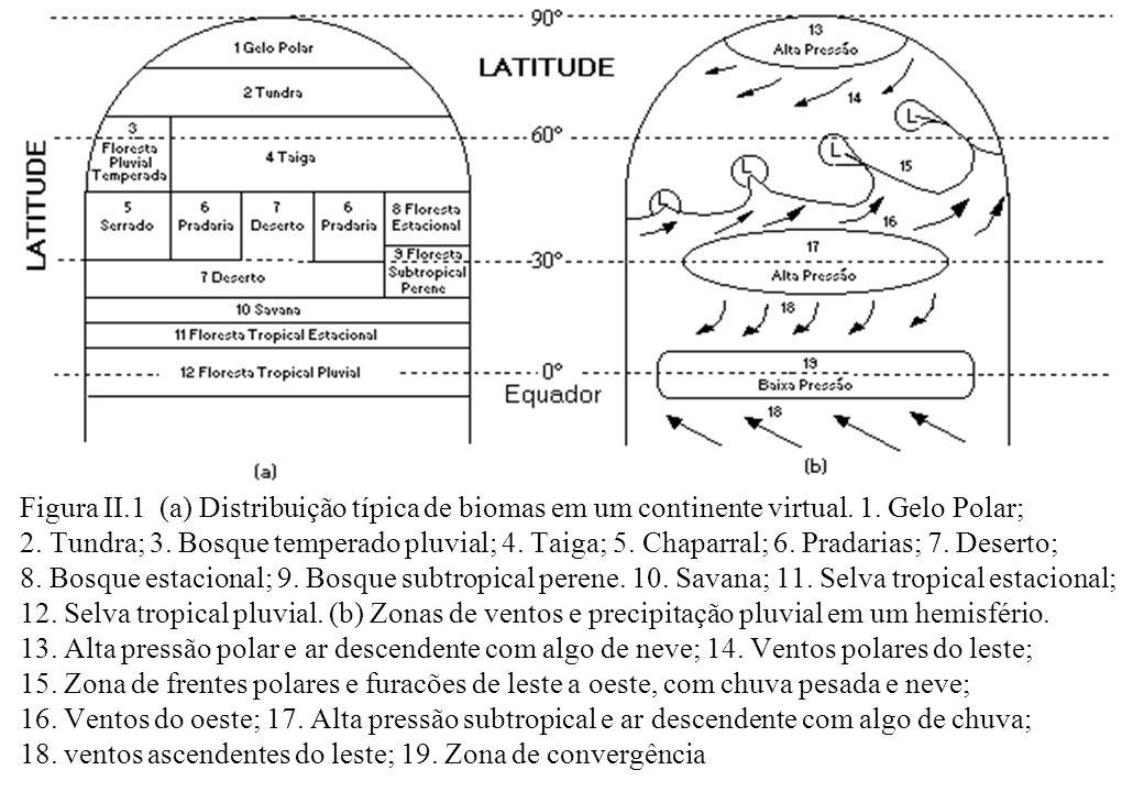 Figura II.1 (a) Distribuição típica de biomas em um continente virtual. 1. Gelo Polar; 2. Tundra; 3. Bosque temperado pluvial; 4. Taiga; 5. Chaparral;
