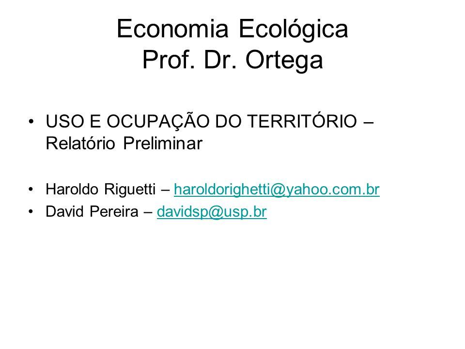 Economia Ecológica Prof. Dr. Ortega USO E OCUPAÇÃO DO TERRITÓRIO – Relatório Preliminar Haroldo Riguetti – haroldorighetti@yahoo.com.brharoldorighetti