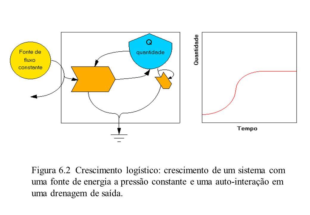 Figura 6.2 Crescimento logístico: crescimento de um sistema com uma fonte de energia a pressão constante e uma auto-interação em uma drenagem de saída.