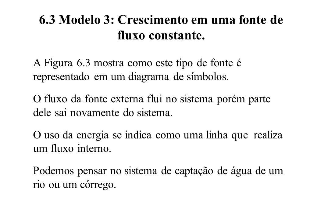 6.3 Modelo 3: Crescimento em uma fonte de fluxo constante.