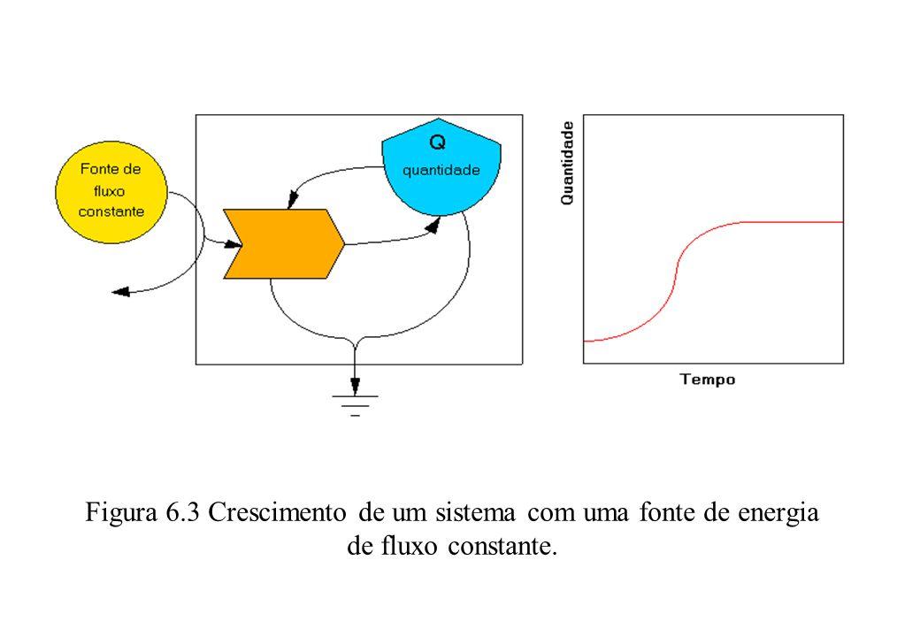 Figura 6.3 Crescimento de um sistema com uma fonte de energia de fluxo constante..