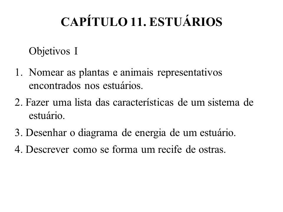 CAPÍTULO 11. ESTUÁRIOS Objetivos I 1.Nomear as plantas e animais representativos encontrados nos estuários. 2. Fazer uma lista das características de
