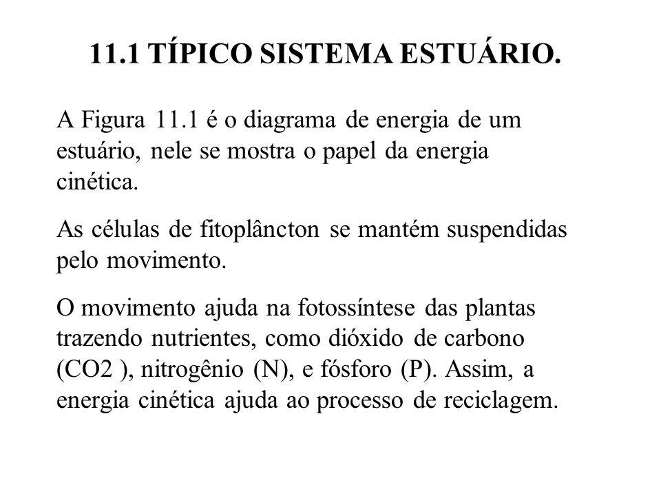 11.1 TÍPICO SISTEMA ESTUÁRIO. A Figura 11.1 é o diagrama de energia de um estuário, nele se mostra o papel da energia cinética. As células de fitoplân