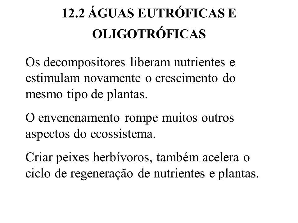 12.2 ÁGUAS EUTRÓFICAS E OLIGOTRÓFICAS Os decompositores liberam nutrientes e estimulam novamente o crescimento do mesmo tipo de plantas.
