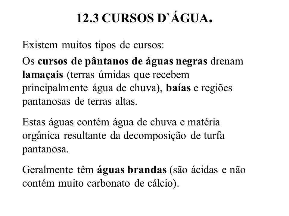 12.3 CURSOS D`ÁGUA.