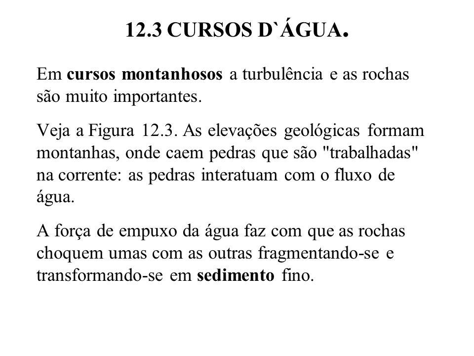 12.3 CURSOS D`ÁGUA.Em cursos montanhosos a turbulência e as rochas são muito importantes.
