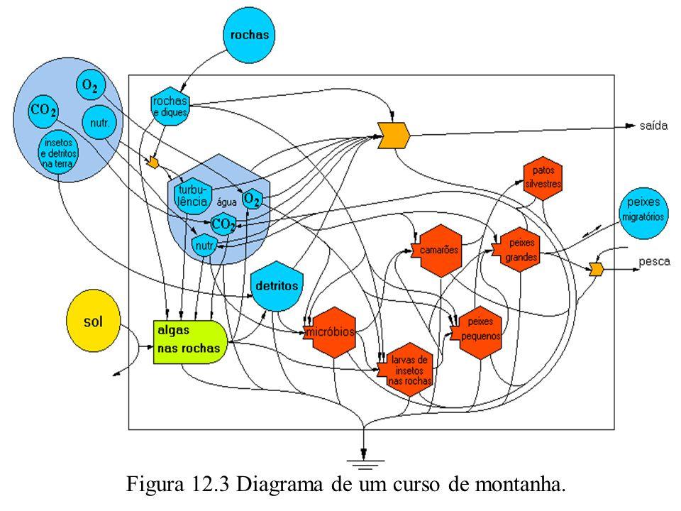 Figura 12.3 Diagrama de um curso de montanha.