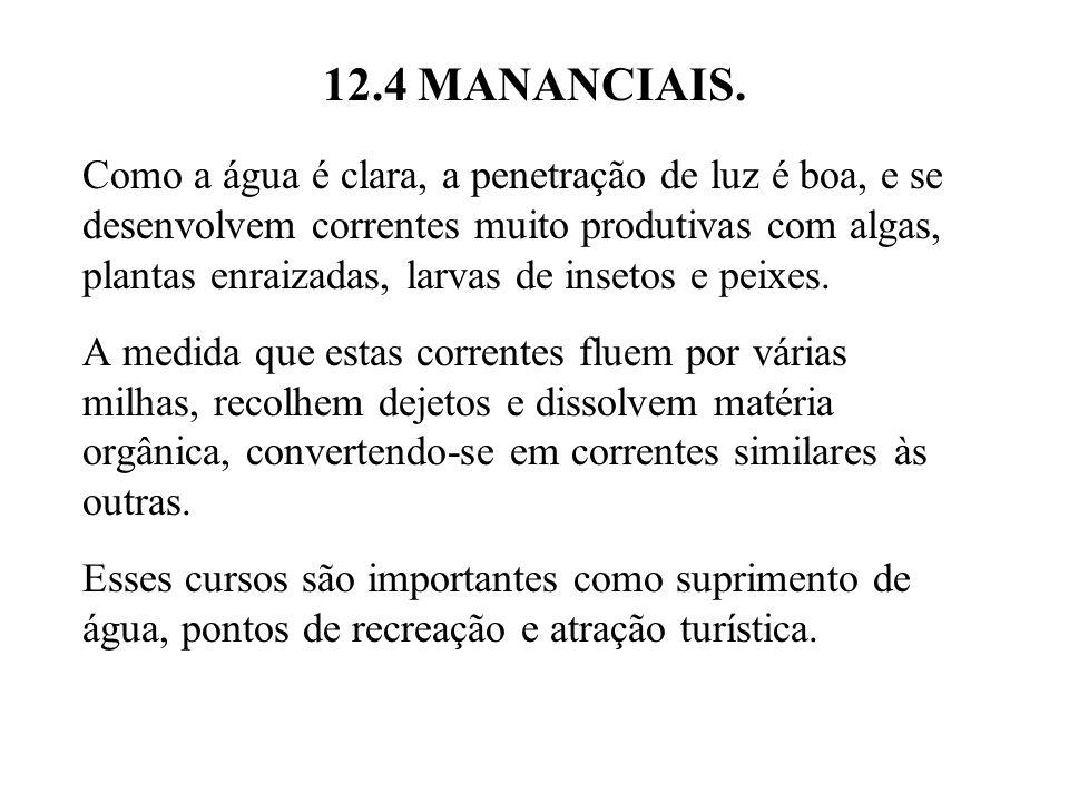 12.4 MANANCIAIS.