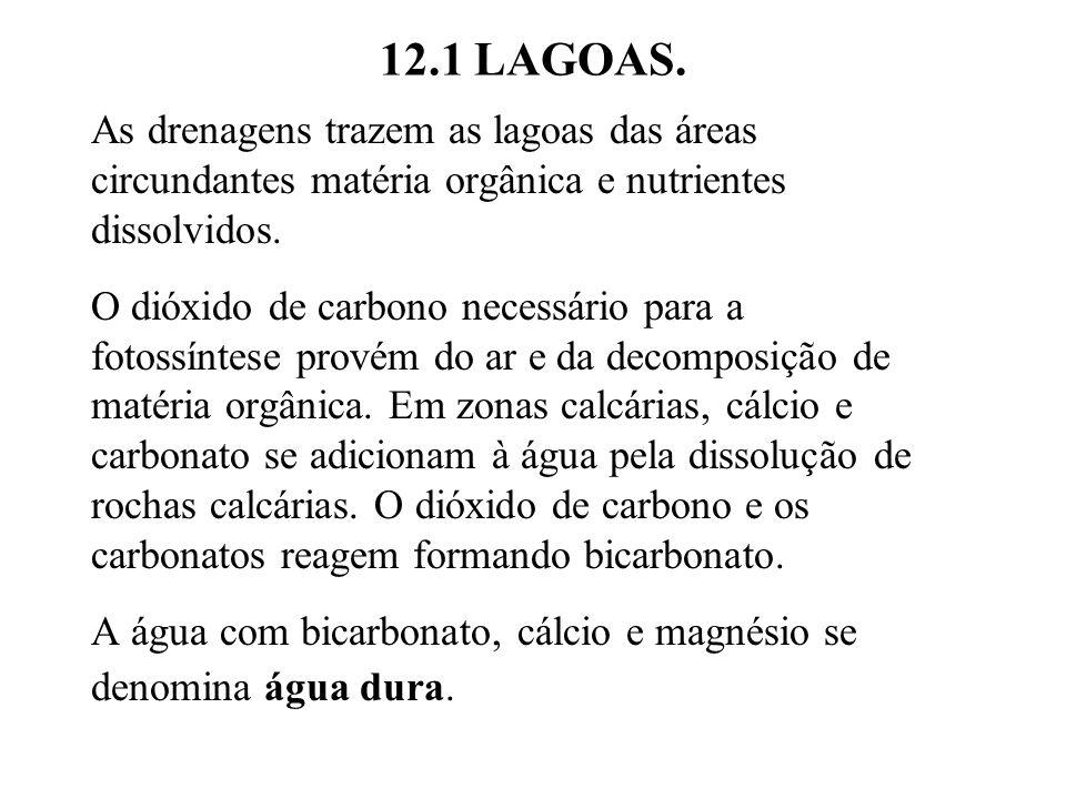 12.1 LAGOAS.