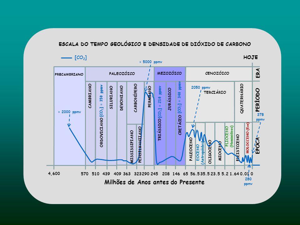 PALEOZÓICO CENOZÓICO 245 65 135 Milhões de Anos Passados © 1999 Addison Wesly London, Inc. MEZOZÓICO Temperatura (ºC) Anos Passados 21 17 1x10 9 10x10