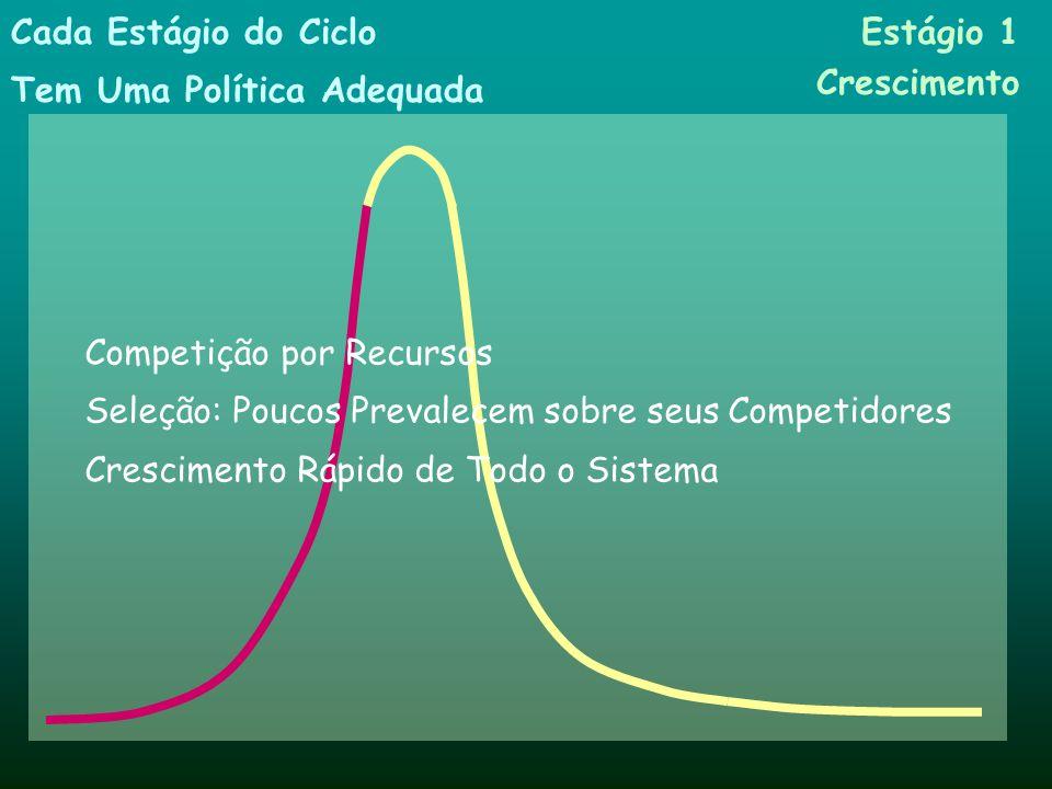 Produtores Consumidores Crescimento Clímax Tempo Princípios SistêmicosPulsos e Ciclos Tempo Ativos Estágio 1 Crescimento Estágio 3 Declínio Estágio 4