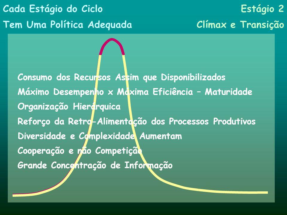 Estágio 1 Crescimento Competição por Recursos Seleção: Poucos Prevalecem sobre seus Competidores Crescimento Rápido de Todo o Sistema Cada Estágio do