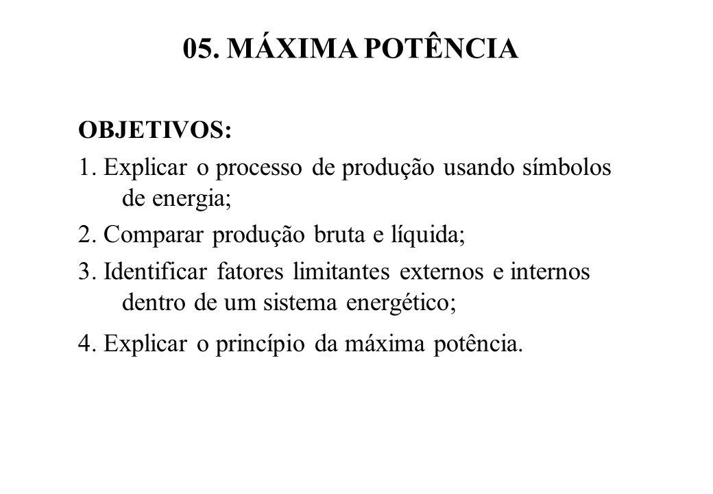 05.MÁXIMA POTÊNCIA OBJETIVOS: 1. Explicar o processo de produção usando símbolos de energia; 2.