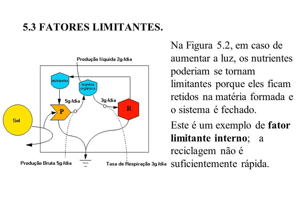5.3 FATORES LIMITANTES.