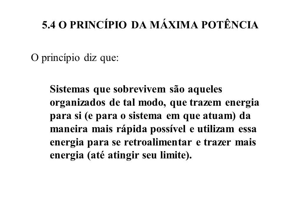 5.4 O PRINCÍPIO DA MÁXIMA POTÊNCIA Outro modo de expressar este princípio é: Os sistemas ao planejar seu desenvolvimento tem como critério a busca da sua sobrevivência.