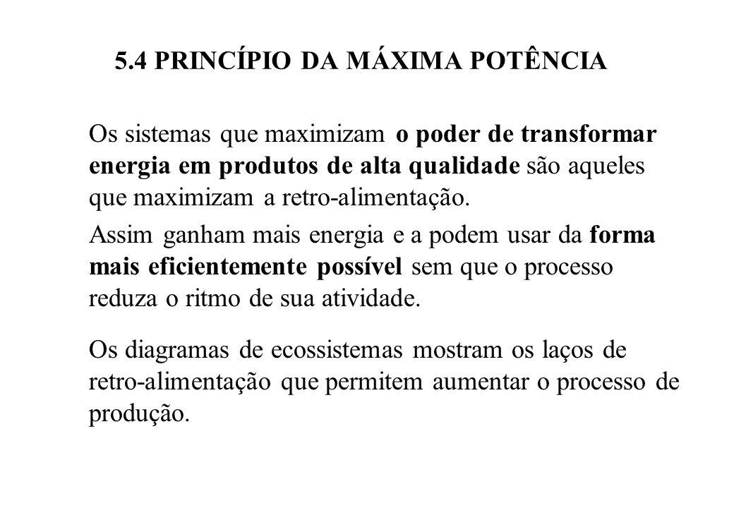 5.4 PRINCÍPIO DA MÁXIMA POTÊNCIA Os sistemas que maximizam a potência também são sistemas que retro-alimentam ao sistema maior, do qual fazem parte.