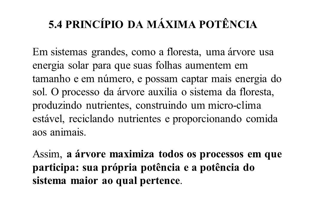 5.4 PRINCÍPIO DA MÁXIMA POTÊNCIA Para maximizar a potência em uma atividade econômica, os recursos locais são modificados por recursos adicionais.