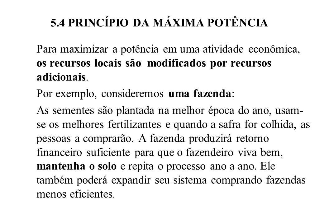 5.4 PRINCÍPIO DA MÁXIMA POTÊNCIA A fazenda que seja administrada com sucesso sobreviverá e será copiada por outros fazendeiros.