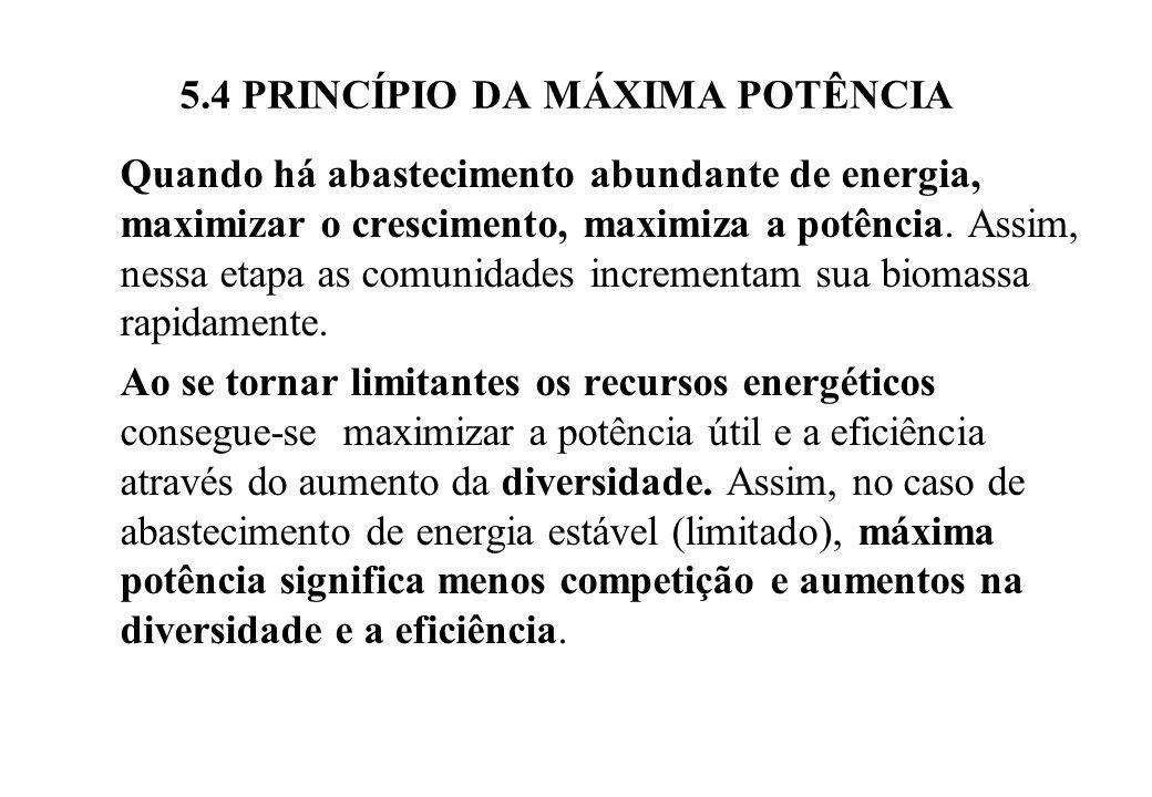 5.4 PRINCÍPIO DA MÁXIMA POTÊNCIA Quando há abastecimento abundante de energia, maximizar o crescimento, maximiza a potência.