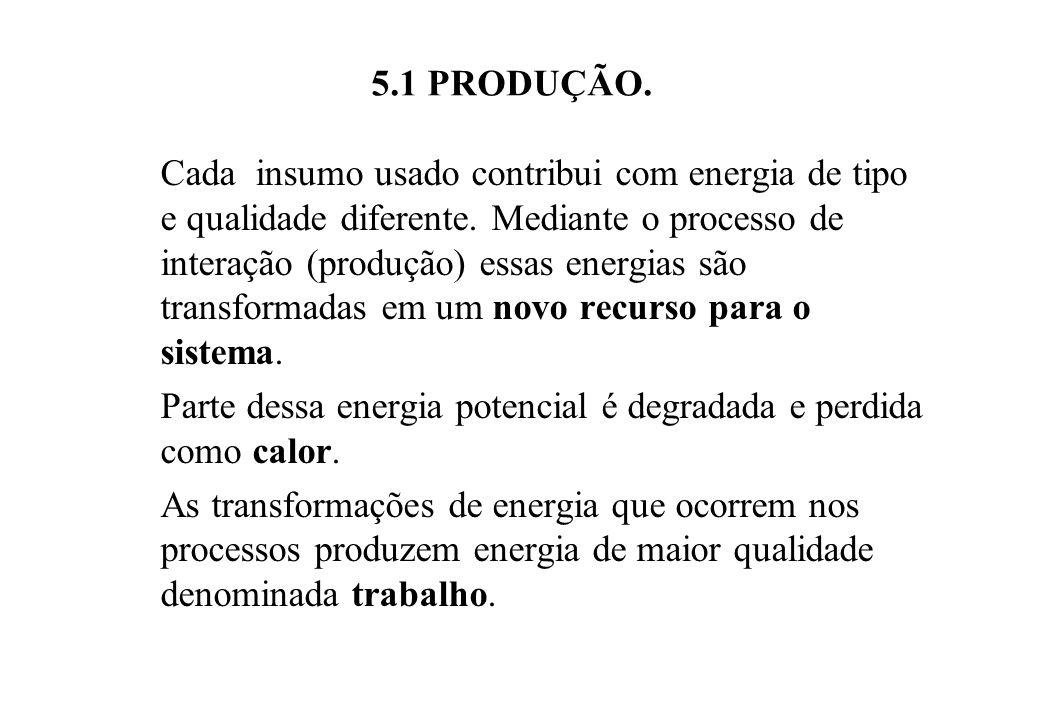 5.1 PRODUÇÃO.Cada insumo usado contribui com energia de tipo e qualidade diferente.