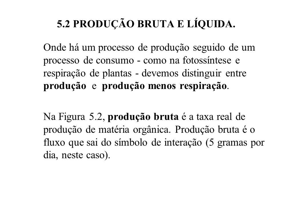 Figura 5.2 - Produção bruta e líquida. P =produção; R=respiração.