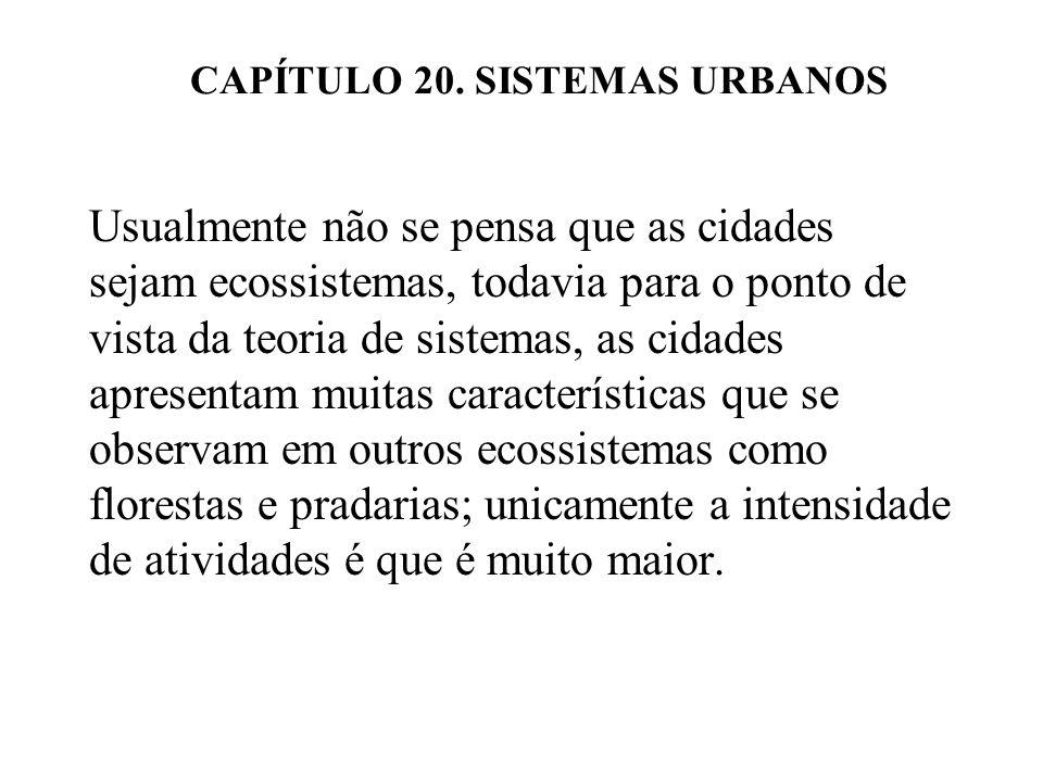 CAPÍTULO 20.