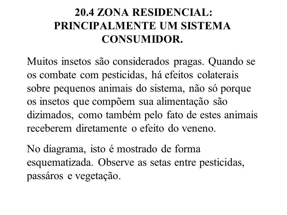 20.4 ZONA RESIDENCIAL: PRINCIPALMENTE UM SISTEMA CONSUMIDOR. Muitos insetos são considerados pragas. Quando se os combate com pesticidas, há efeitos c