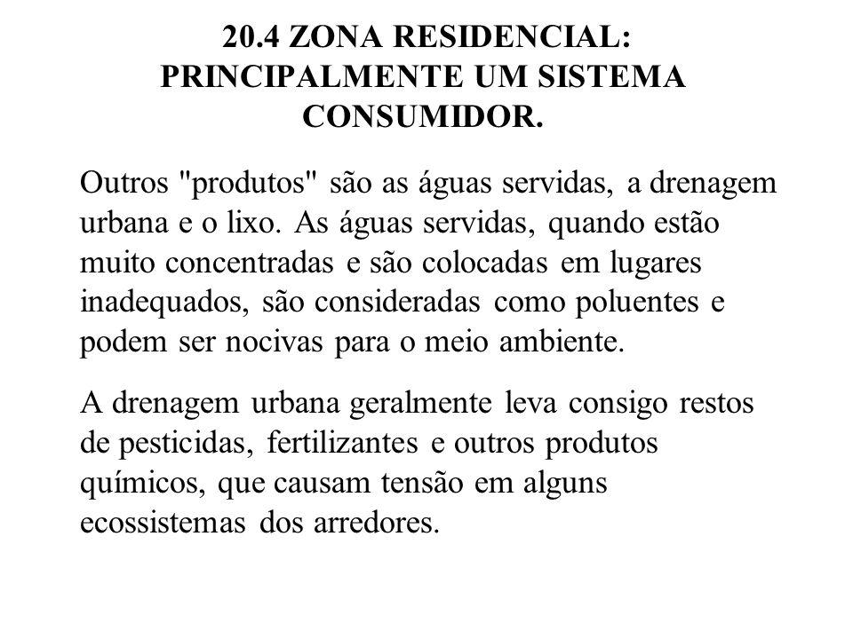 20.4 ZONA RESIDENCIAL: PRINCIPALMENTE UM SISTEMA CONSUMIDOR. Outros