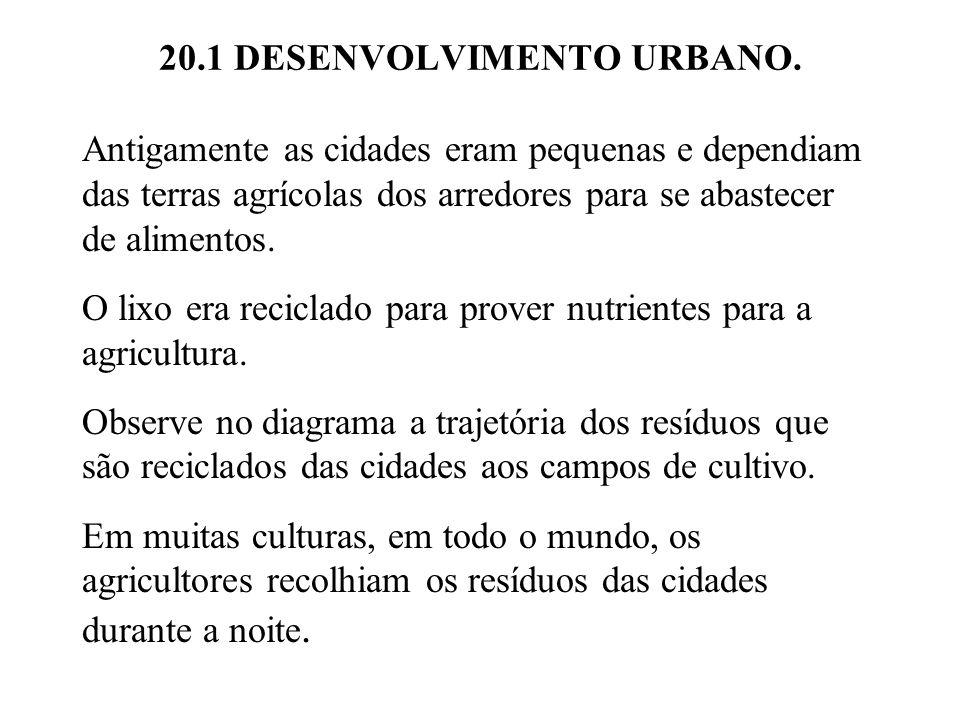 20.1 DESENVOLVIMENTO URBANO.