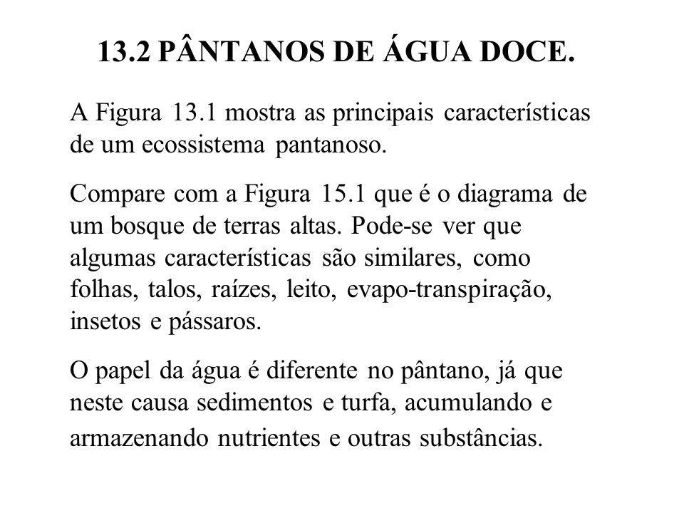 13.2 PÂNTANOS DE ÁGUA DOCE.