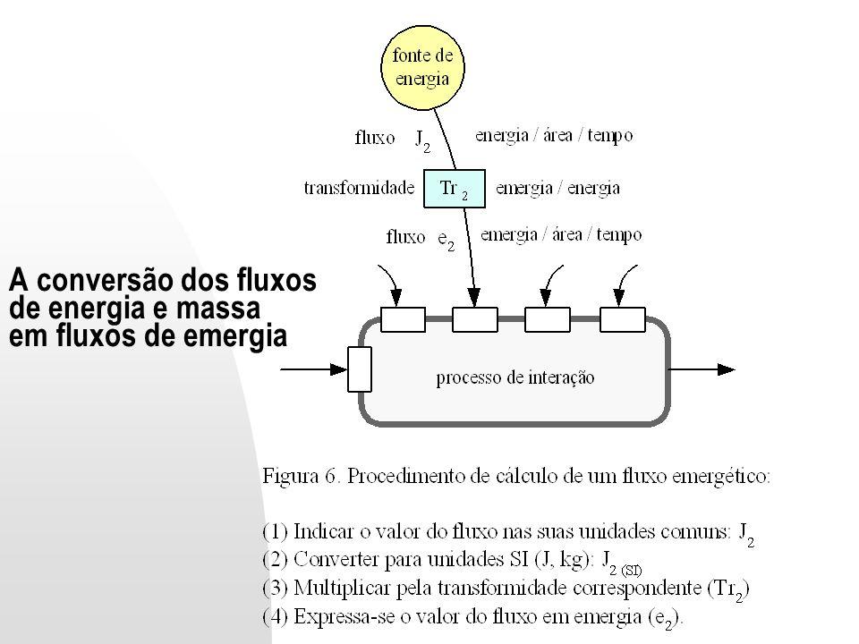 A conversão dos fluxos de energia e massa em fluxos de emergia