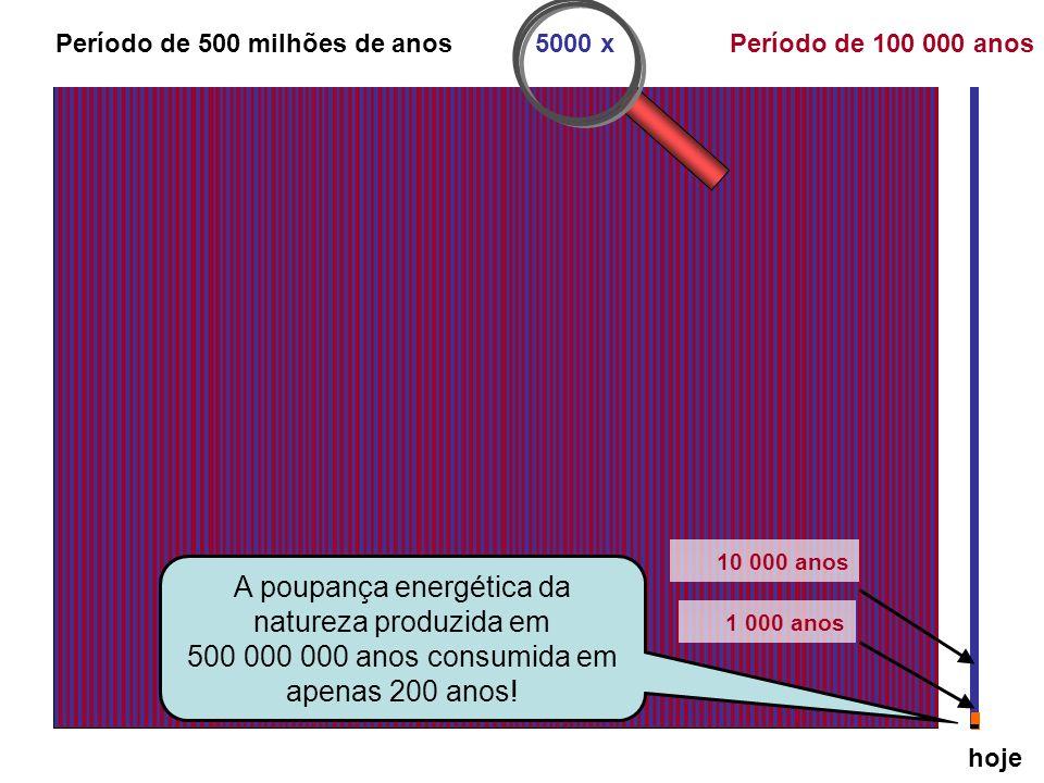 hoje 1 000 000 de anos atrás 100 000 anos Período de 5 milhões de anos100 x Período de 500 milhões de anos