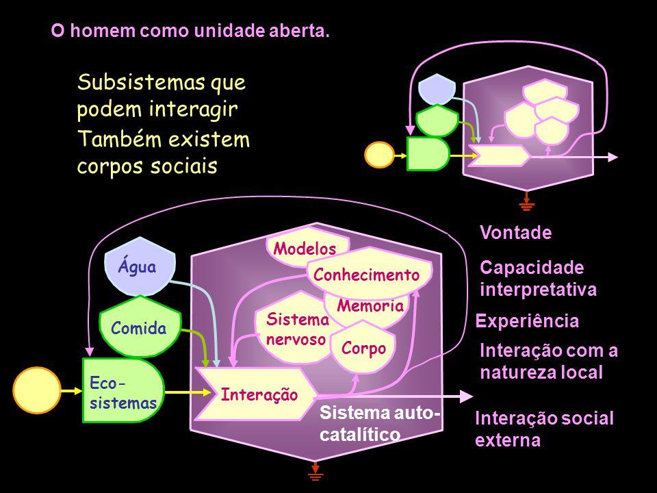 Trabalhos: Socialização, Estudo e aplicação de saberes, Maturidade emocional, Inovação, Intercâmbio de conhecimento e afeto, Reprodução, Autonomia, Au