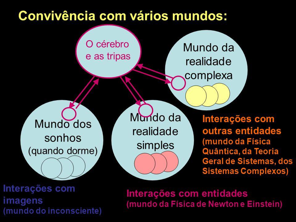 Produtos do conhecimento para a colaboração Valores humanos para conviver com a natureza Estruturas do conhecimento para o convívio Valores humanos pa