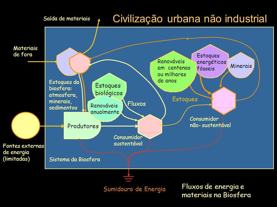 Fontes externas de energia (limitadas) Sumidouro de Energia Sistema da Biosfera Etapa inicial de desenvolvimento humano Produtores Estoques da biosfer