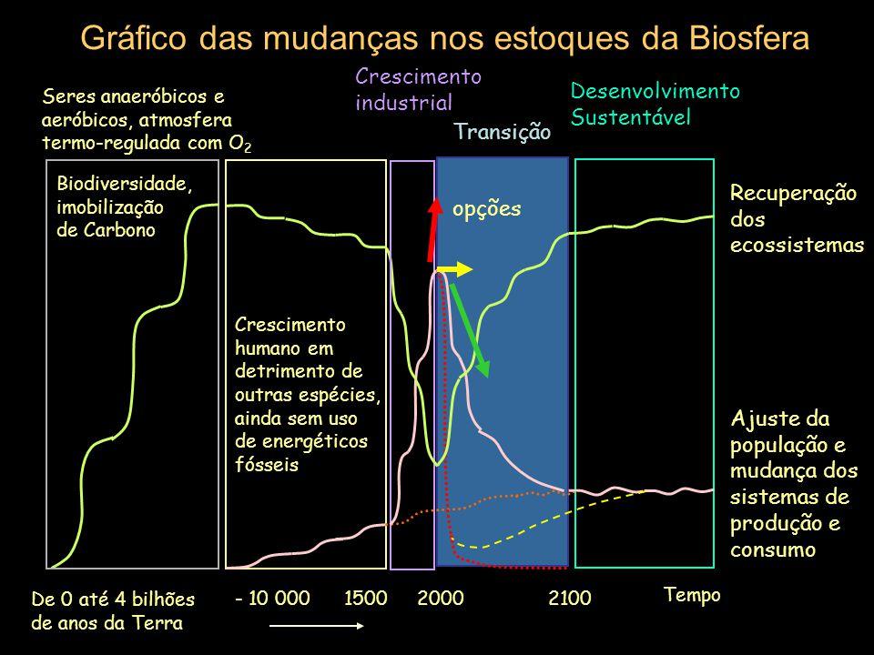 Fontes externas de energia (limitadas) Sumidouro de Energia Sistema da Biosfera Situação inicial do reajuste Produtores Estoques da biosfera: atmosfer