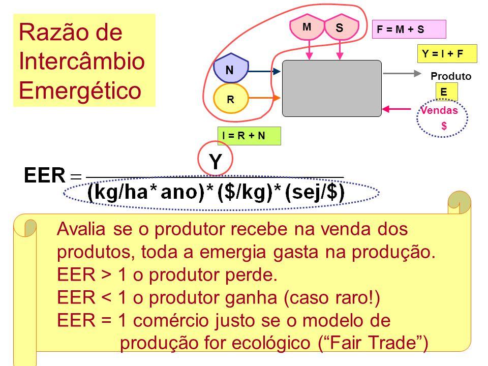 Relação entre a emergia não renovável e a emergia renovável. Razão de Carga Ambiental F = M + S R I = R + N Produto Y = I + F E Vendas N M S $