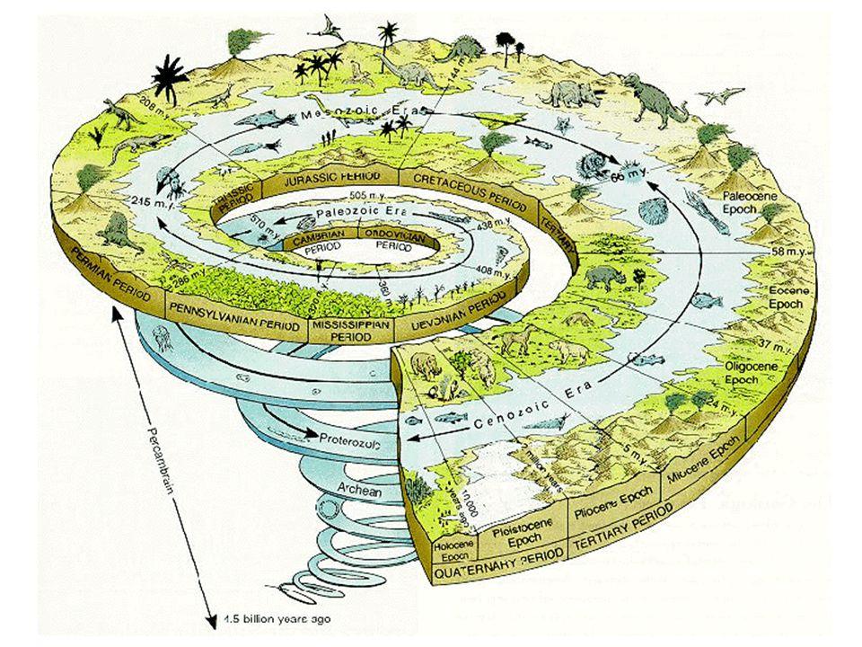2500 4600 3800 Era Cenozóica Era Mesozóica Era Paleozóica Era Proterozoica Era Arqueana Era Hadeana 570 245 65 O presente Milhões de anos atrás Eon Pr
