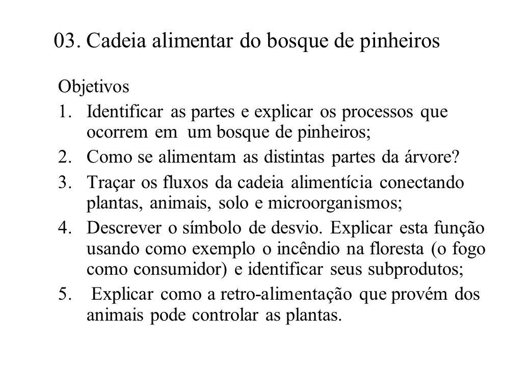 03. Cadeia alimentar do bosque de pinheiros Objetivos 1.Identificar as partes e explicar os processos que ocorrem em um bosque de pinheiros; 2.Como se