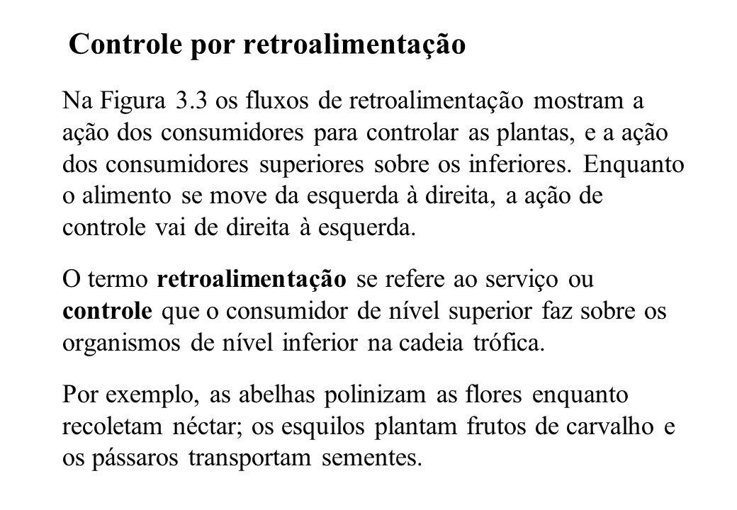 Controle por retroalimentação Na Figura 3.3 os fluxos de retroalimentação mostram a ação dos consumidores para controlar as plantas, e a ação dos consumidores superiores sobre os inferiores.
