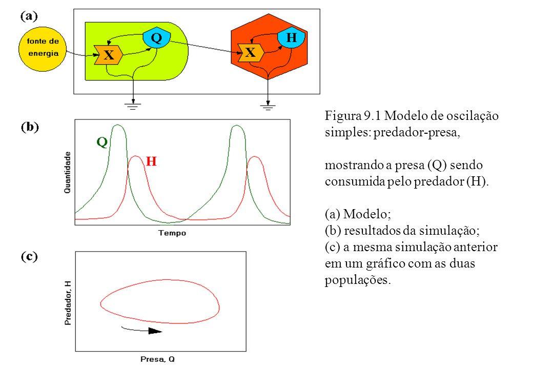 Figura 9.1 Modelo de oscilação simples: predador-presa, mostrando a presa (Q) sendo consumida pelo predador (H). (a) Modelo; (b) resultados da simulaç