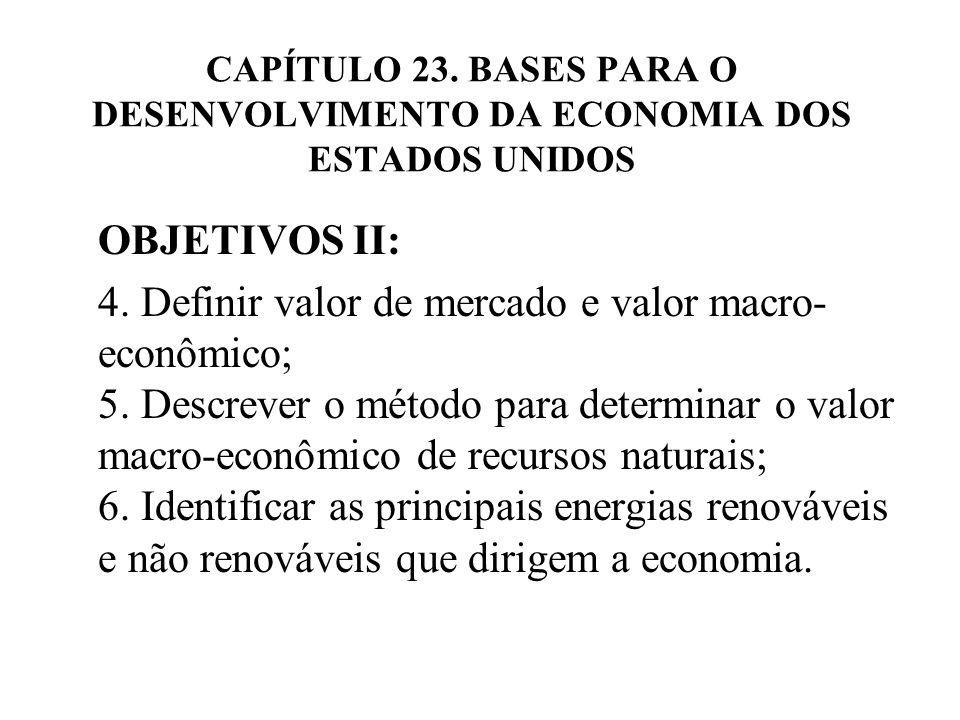 CAPÍTULO 23. BASES PARA O DESENVOLVIMENTO DA ECONOMIA DOS ESTADOS UNIDOS OBJETIVOS II: 4. Definir valor de mercado e valor macro- econômico; 5. Descre